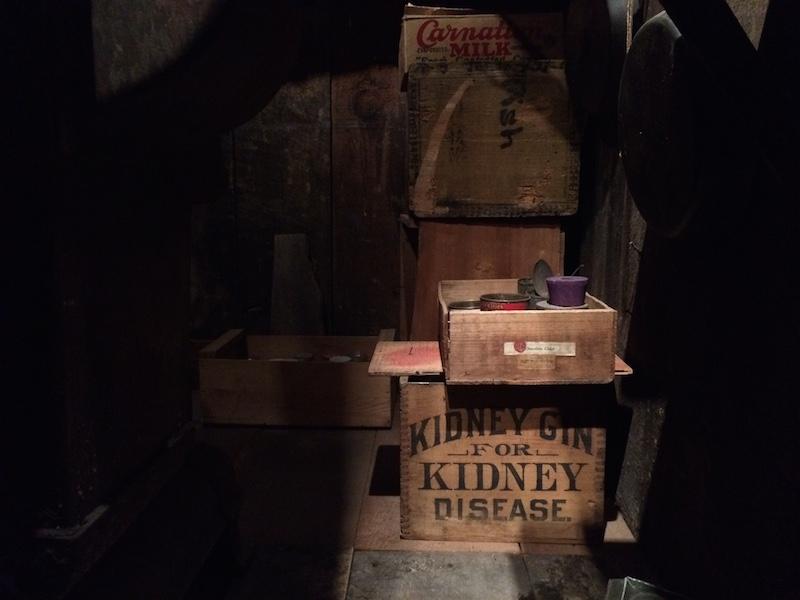 kidney gin