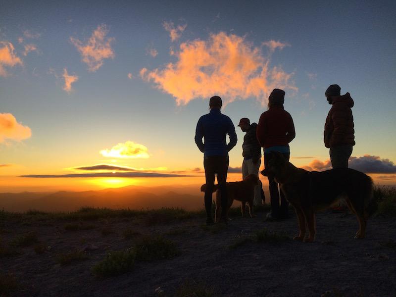 sunsetgroup